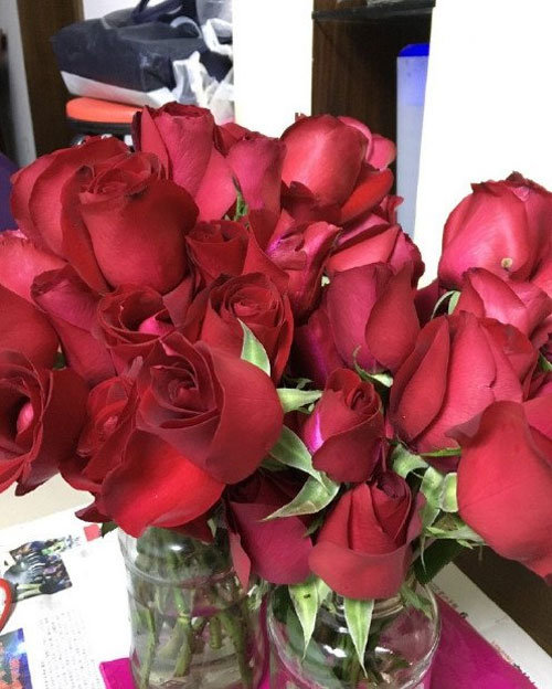 求婚玫瑰被炒成酱 男友心理阴影面积得多大啊